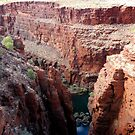Five gorges by Flo Wetherley