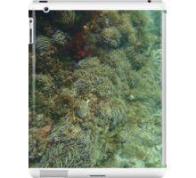 Diving 2 iPad Case/Skin
