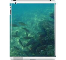 Diving (Fishes) iPad Case/Skin