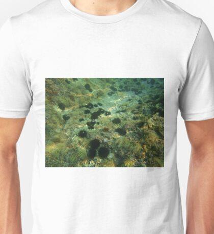 Diving (sea urchins 2) Unisex T-Shirt