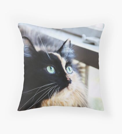 A Cat is a Poem Throw Pillow
