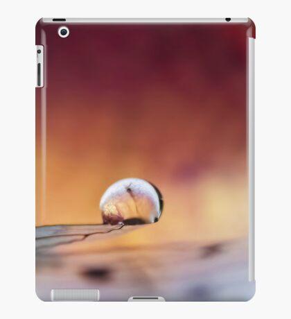 Poised on Angel's Wing iPad Case/Skin