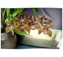 Brass-ket Weave And Semi-Gloss Purple Poster