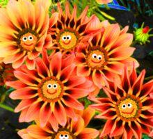 Smiling Gazanias  Sticker