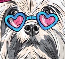 Dog Lion Bichon (Lowchen)  Sticker