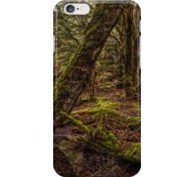 Ancient Forrest iPhone Case/Skin
