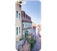 Meissen iPhone Case/Skin