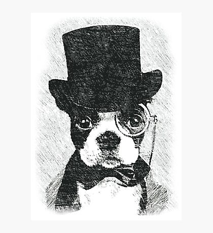 Cute Vintage Dog Wearing Glasses Photographic Print