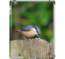 Nuthatch collecting sunflower seeds iPad Case/Skin