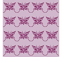 Butterfly Purple Photographic Print