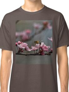 Bee, blossom and promise of spring Classic T-Shirt