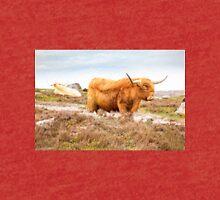Highland Cattle Tri-blend T-Shirt