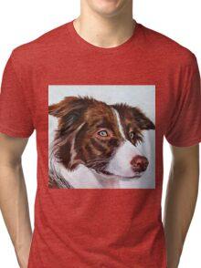 Brown Border Collie Tri-blend T-Shirt