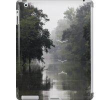 Serene Swamp iPad Case/Skin