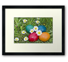 Easter Eggs in the Grass Closeup Framed Print