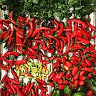 So many chiles... by Nicoletta37