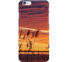 Sunrise Grass iPhone Case/Skin