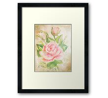 Rose with petals sweet. Framed Print