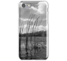 On 9-Mile Pond iPhone Case/Skin