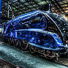 LNER Mallard by Andrew Pounder