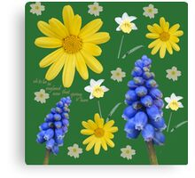 Now that spring is here Canvas Print