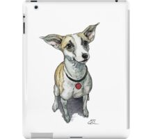Cute Dog from Africa iPad Case/Skin