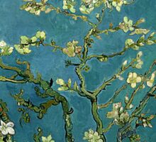 Van Gogh Almond Blossoms Sticker