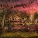 Cabin - De Land, FL - Summer Cottage 1904 by Mike  Savad