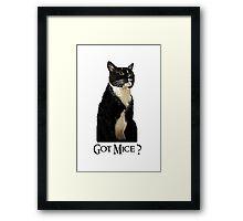 Got Mice? Framed Print