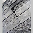 Wood by Stuart Stolzenberg