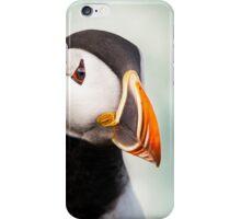 Icelandic Puffin Portrait iPhone Case/Skin