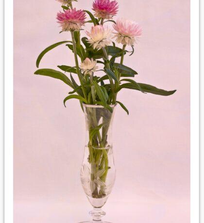 Straw Flowers - Digital Water Color Sticker