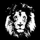 Black Lion by Stuart Stolzenberg