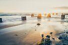 Coogee Sunrise by yolanda