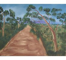 Gum trees along a dirt road. Photographic Print