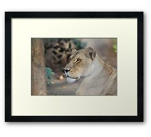 What are you looking at??  Framed Print