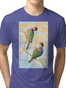 Sunrise at the island with the Black Capped Lories Tri-blend T-Shirt