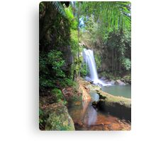 Curtis Falls, Mount Tamborine Metal Print