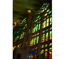 Glorious Colors and Light Photographic Print