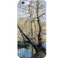 Ladybrook Meander iPhone Case/Skin