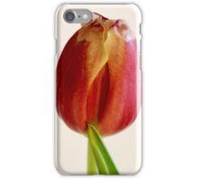 red tulip macro iPhone Case/Skin