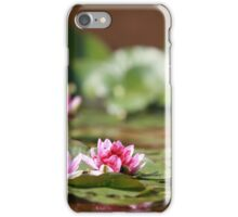 waterlily wildflower red lotus iPhone Case/Skin