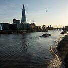 Sailing Up the Thames River in London, UK by Georgia Mizuleva