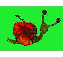 Apple snail Photographic Print