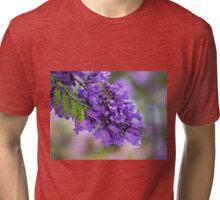 Jacaranda in spring Tri-blend T-Shirt