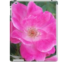 Pink Rose of Mary Windows From Heaven iPad Case/Skin