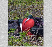 Ecuador. Galapagos Islands. Frigatebirds. Sweethearts. Hoodie