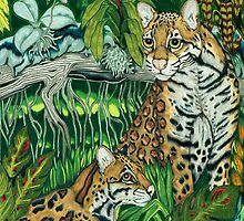 Ocelots by Catherine  Howell
