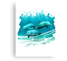 3 Dolphins Canvas Print
