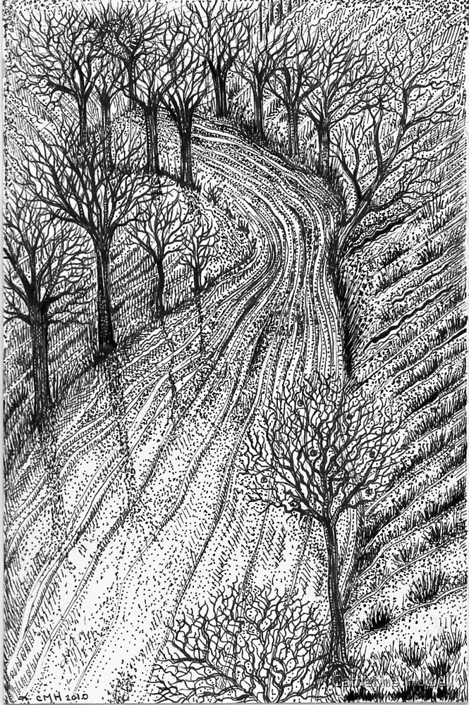 The Long Winding Road by Catherine  Howell